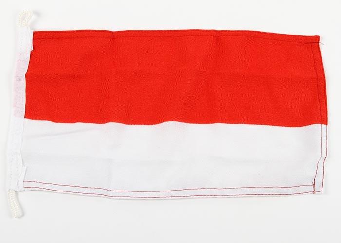 Gästflagga Polen