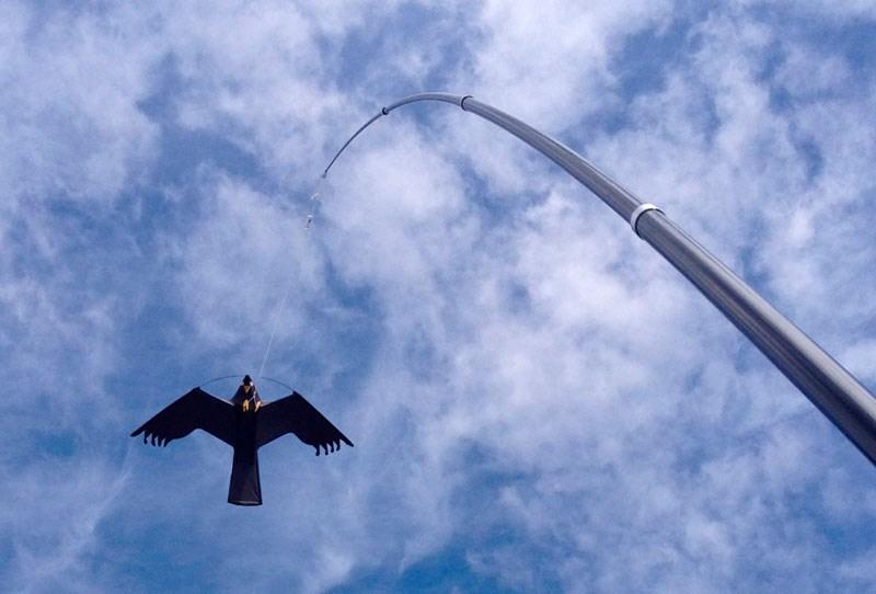 Fågelskrämma drake med mast