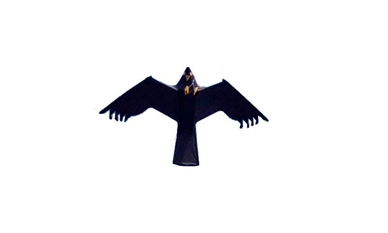 Fågelskrämma drake utan mast